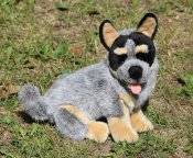 Australian cattle dog mjukisdjur