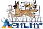 Belgisk vallhund malinois agility 1 t-shirt McCartney