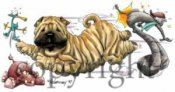 Shar pei at play t-shirt McCartney
