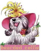 Bearded collie calendar out takes t-shirt 20 McCartney