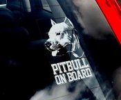 American pitbullterrier bildekal 2 - on board