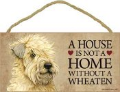 Irish softcoated wheaten terrier skylt A house is not a home - Great