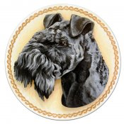 Kerry blue terrier tavla