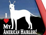 American hairless terrier bildekal