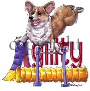 Welsh corgi pembroke agility 2 t-shirt McCartney