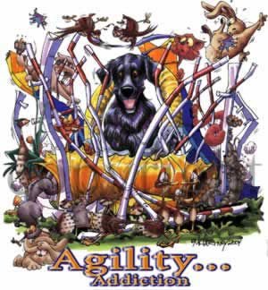 Flatcoated retriever agility 1 t-shirt McCartney