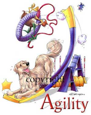 Golden retriever agility 2 t-shirt McCartney