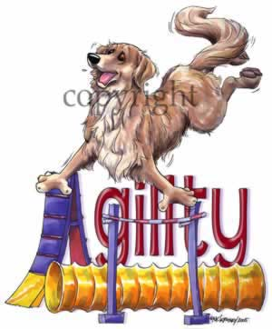 Golden retriever agility 4 t-shirt McCartney