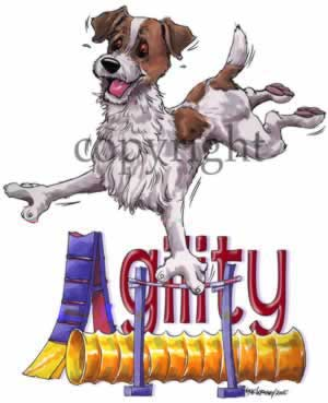 Jack russell terrier agility 4 t-shirt McCartney