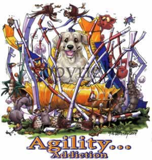 Labrador retriever (gul) agility 3 t-shirt McCartney