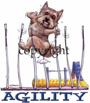 Norwichterrier agility 1 t-shirt McCartney