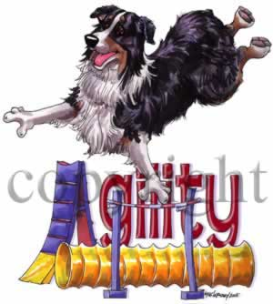 Australian shepherd agility 6 t-shirt McCartney