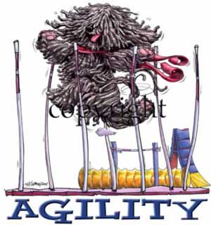 Puli agility 1 t-shirt McCartney