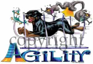 Rottweiler agility 4 t-shirt McCartney