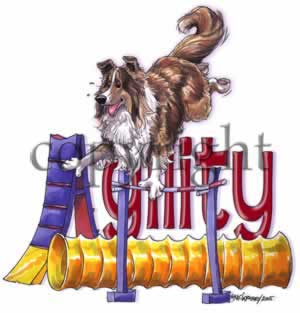 Shetland sheepdog agility 2 t-shirt McCartney