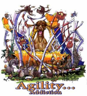 Ungersk vizsla agility 2 t-shirt McCartney