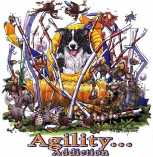 Border collie agility 1 t-shirt McCartney