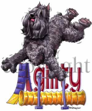 Bouvier des flandres agility 2 t-shirt McCartney