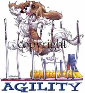 Cavalier king charles spaniel agility 4 t-shirt McCartney