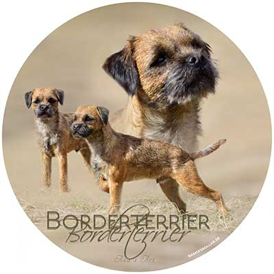 Borderterrier bildekal 1 Åsas Art