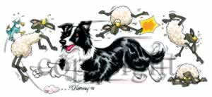 Border collie at play t-shirt McCartney