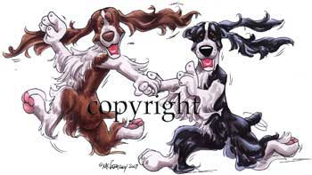 Engelsk springer spaniel at play 3 t-shirt McCartney