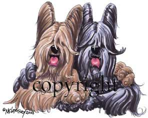 Briard buddies t-shirt McCartney