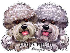 Dandie dinmont terrier buddies t-shirt McCartney