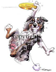 Australian shepherd calendar out takes t-shirt 2 McCartney