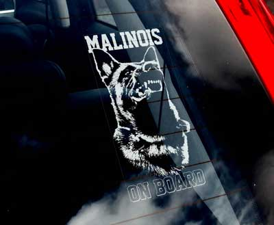 Belgisk vallhund malinois bildekal V3 - on board