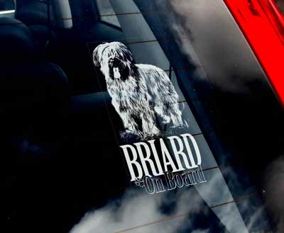 Briard (okuperad) bildekal - on board