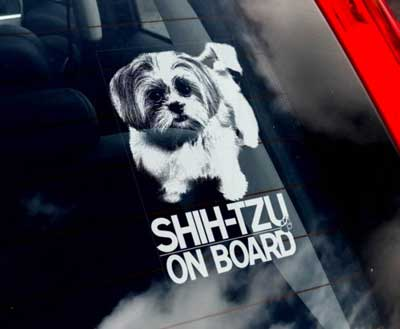 Shih tzu bildekal - on board