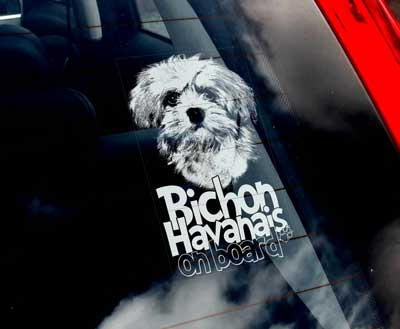 Bichon havanais bildekal 1 - on board