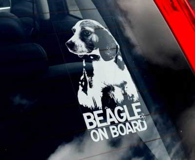 Beagle bildekal - on board