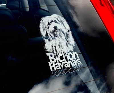 Bichon havanais bildekal 2 - On Board