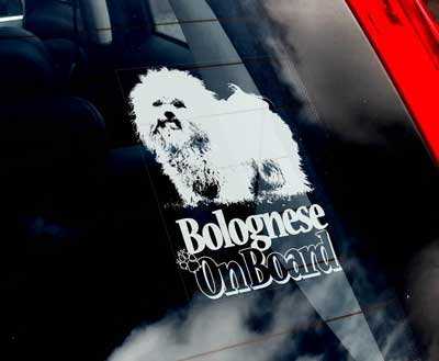 Bolognese bildekal - on board