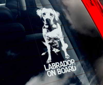 Labrador retriever (gul) bildekal - on board