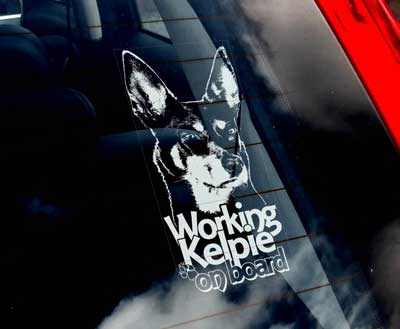 Working kelpie bildekal V1 - on board