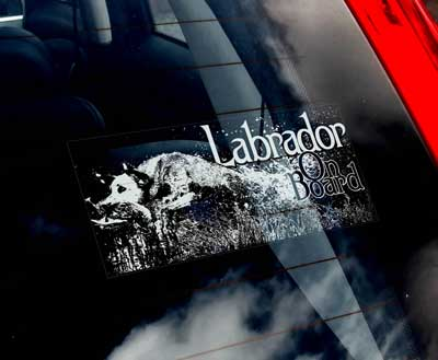 Labrador retriever (jakt) bildekal - on board