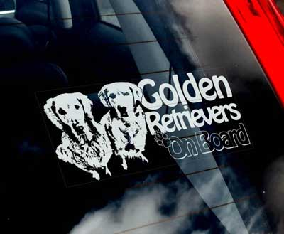 Golden retriever (plural) bildekal - on board