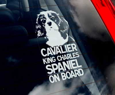 Cavalier king charles spaniel bildekal - on board