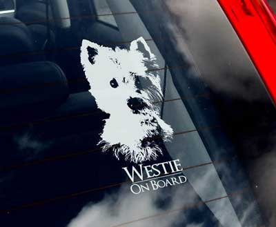 West highland white terrier bildekal - on board
