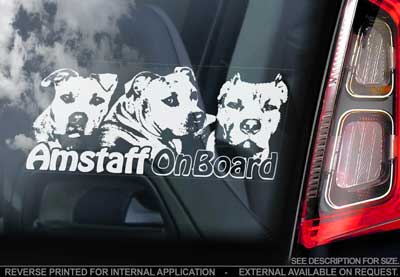 American staffordshire terrier bildekal 3 - on board