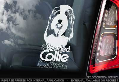 Bearded collie bildekal V2 - on board