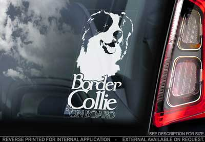 Border collie bildekal V4 - on board