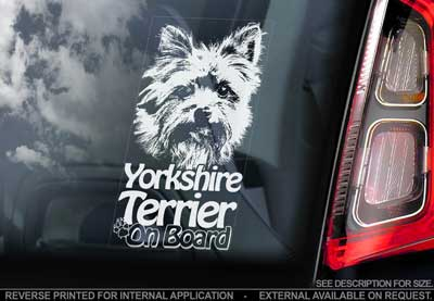 Yorkshireterrier bildekal V3 - on board