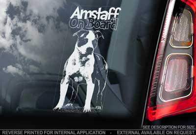 American staffordshire terrier bildekal V5 - on board
