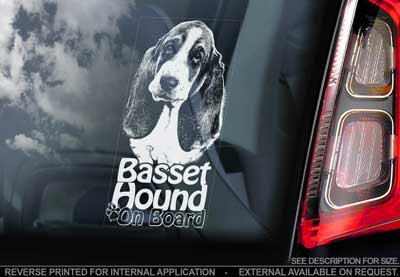 Basset hound bildekal V2 - on board