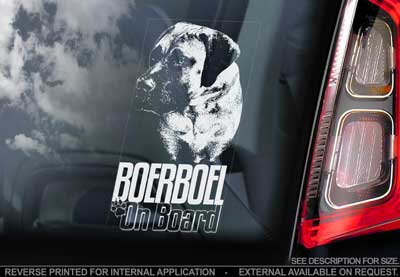 Boerboel bildekal V6 - on board