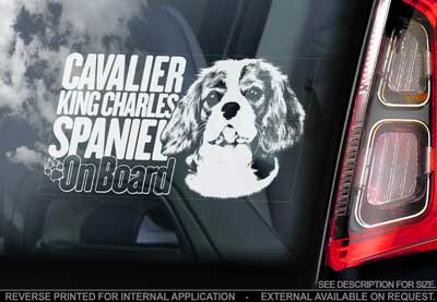 Cavalier king charles spaniel bildekal V2 - on board